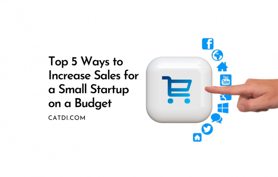 Top 5 Ways to Increase Sales for a Small Startup on a Budget